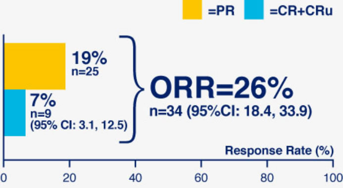 REVLIMID® Efficacy Data (Overall Response Rate)